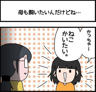 2018_243_1